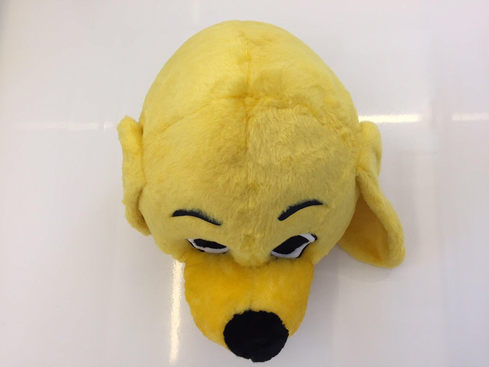 Hund-Kostume-16p